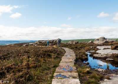 Simonside Walks
