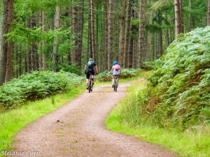 Thrunton Woods Cyclists