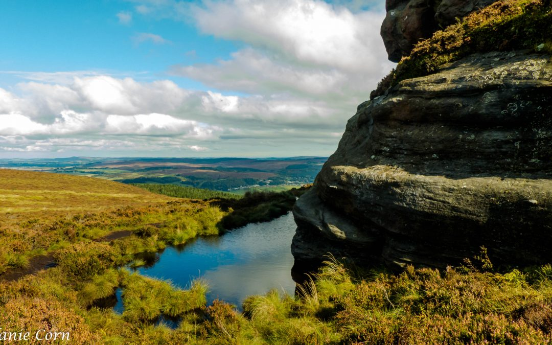 Northumberland Walks: Simonside & Rothbury